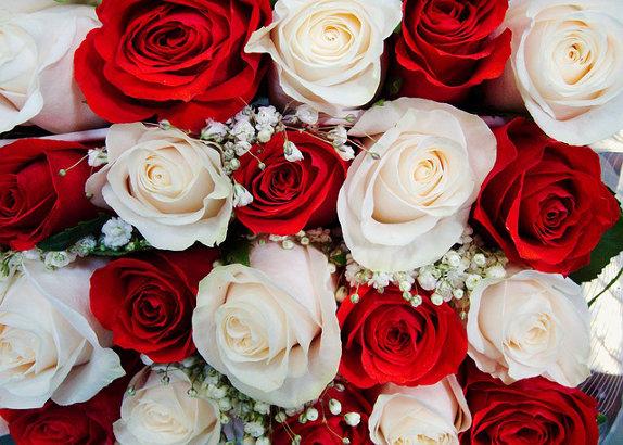 fleuriste-offre-des-roses