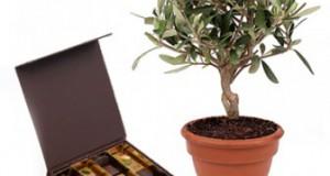 livraison-olivier-chocolats
